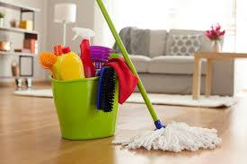 Cleaning Professional